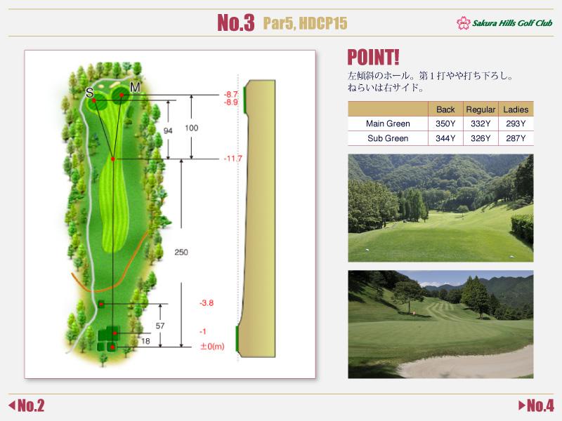 桜ヒルズゴルフクラブ Course detail No.3